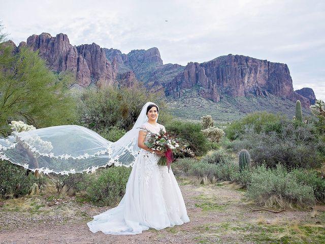 Trisha and Michael's Wedding in Gold Canyon, Arizona 29
