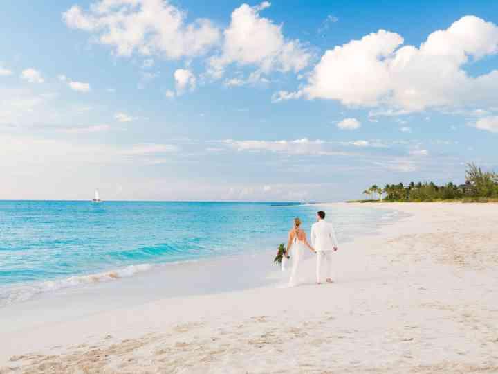The wedding of Lauren Petroff and Chris Briggs-Lawrance