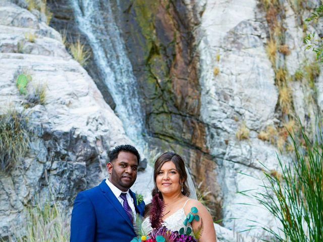 Amy and Aaron's Wedding in Tucson, Arizona 30