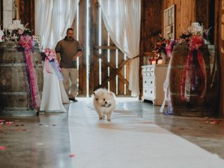 The wedding of Zach and Brianna 3