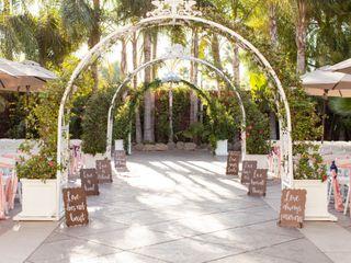 The wedding of Lisa and Seth 3