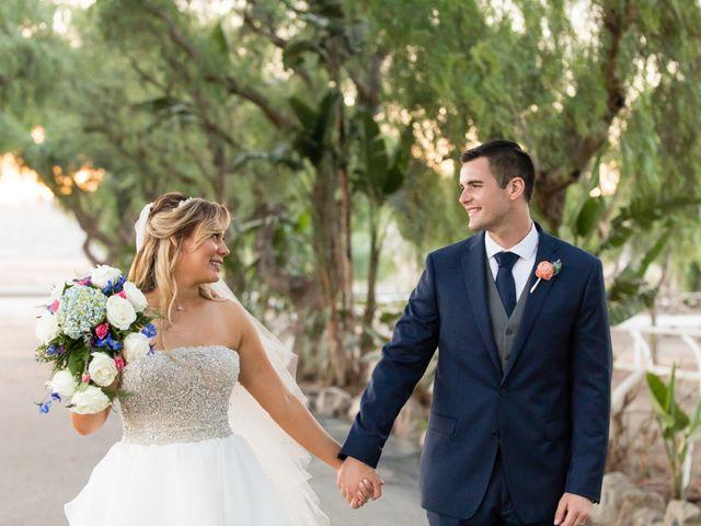 The wedding of Lisa and Seth