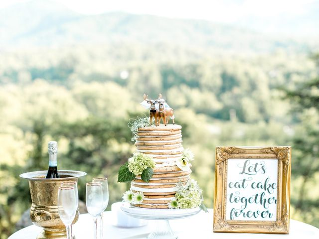 Trey and Kristina's Wedding in Townsend, Tennessee 20