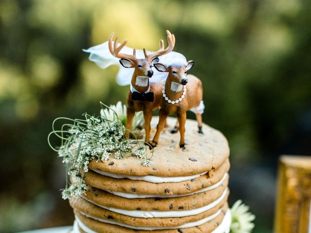 Trey and Kristina's Wedding in Townsend, Tennessee 21