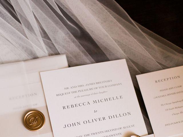 John and Rebecca's Wedding in Chicago, Illinois 4