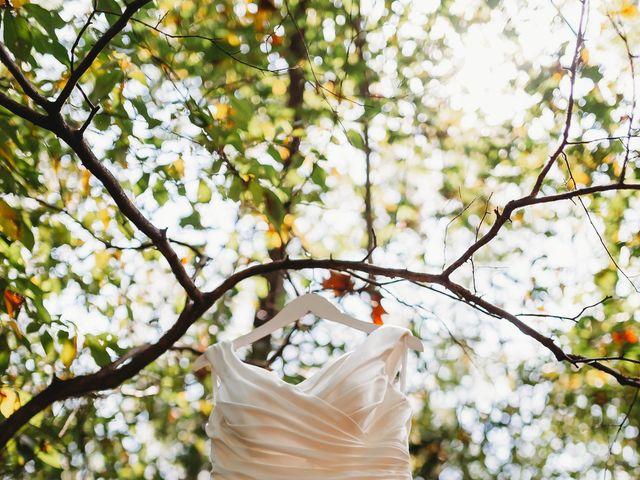 Anthony and Katya's Wedding in Asheville, North Carolina 6