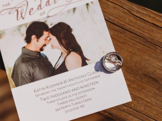 Anthony and Katya's Wedding in Asheville, North Carolina 10
