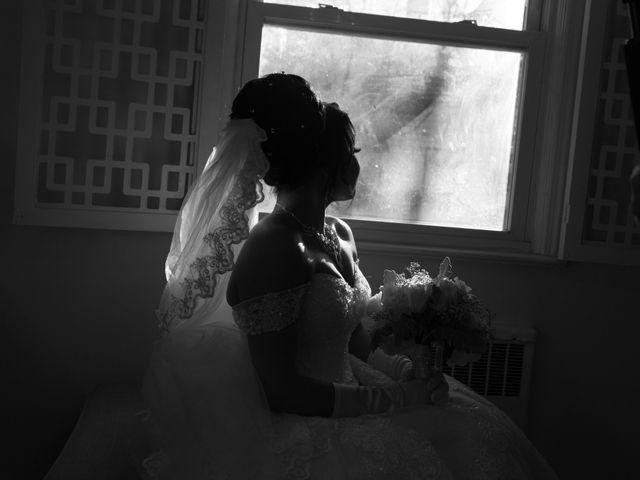 Radia and Ahmad's Wedding in Verona, New Jersey 6