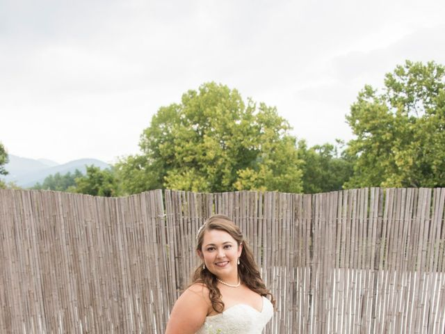 Brandon and Natalie's Wedding in Asheville, North Carolina 9