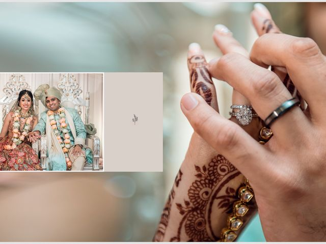 Himesh and Bindya's Wedding in Long Island City, New York 6
