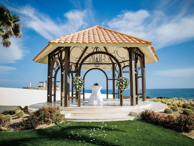 Erica and Michael's Wedding in San Jose del Cabo, Mexico 44