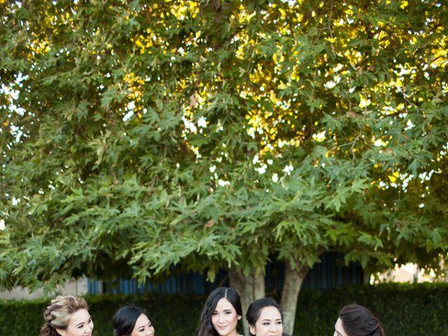 Anna and Rodney's Wedding in Sonoma, California 5
