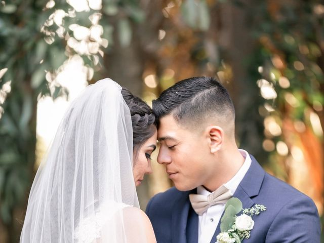 Violet and David's Wedding in San Diego, California 23