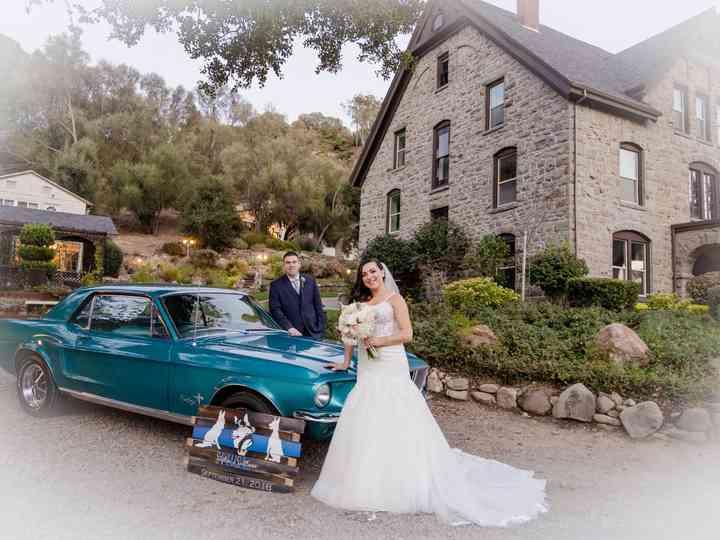 The wedding of Svetlana and Stephen