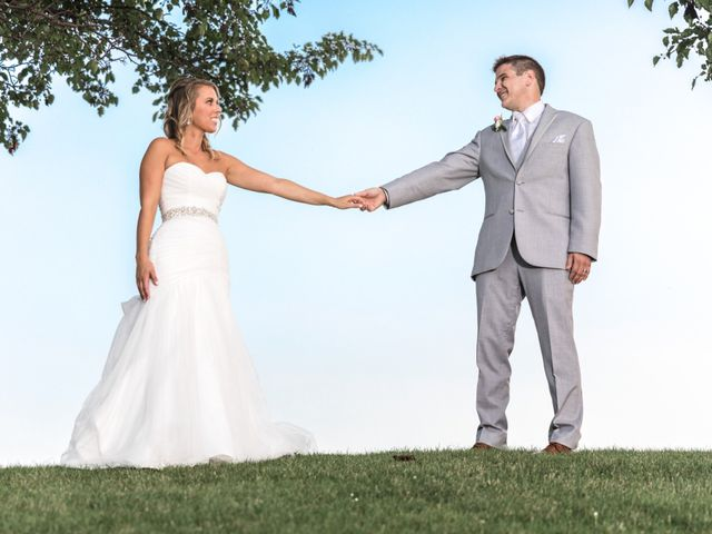 Larry and Jacalyn's Wedding in Vernon Hills, Illinois 5