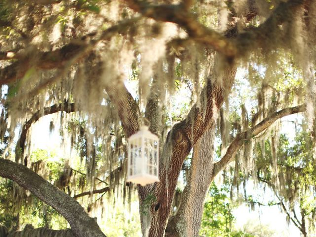 Katelyn and Tyler's Wedding in Dover, Florida 28