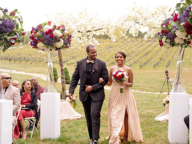 Andre and Leena's Wedding in Stafford, Virginia 11