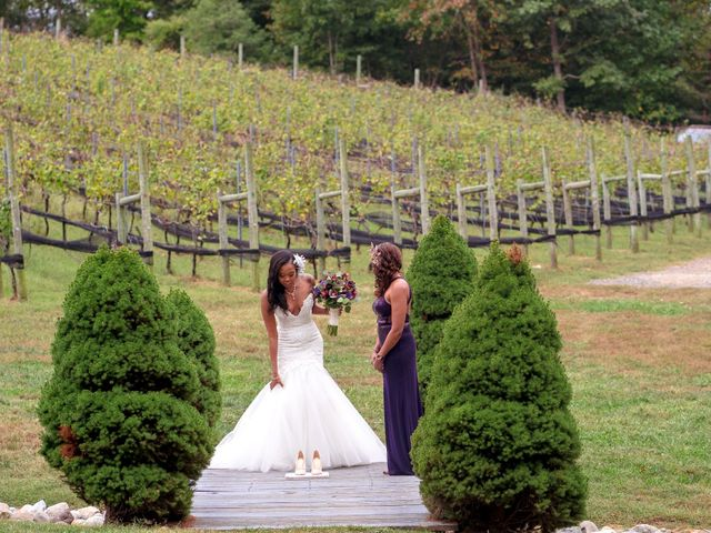 Andre and Leena's Wedding in Stafford, Virginia 12