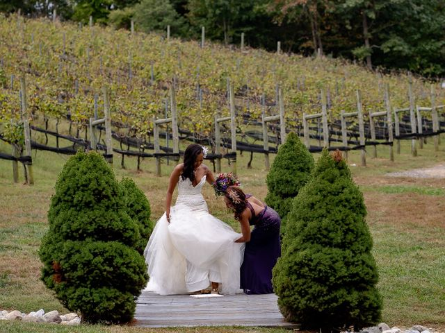 Andre and Leena's Wedding in Stafford, Virginia 13