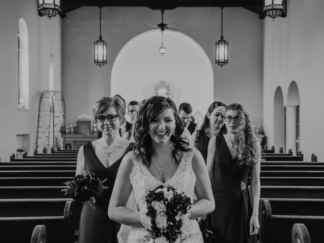 Peter and Lyndsey's Wedding in Grand Rapids, Michigan 1