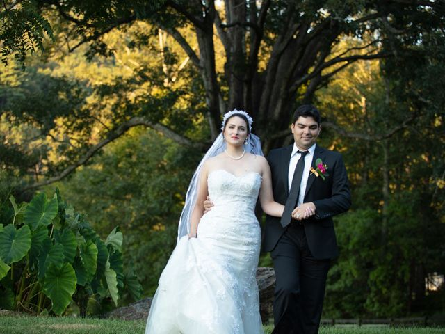 Holly and Chris's Wedding in Asheville, North Carolina 1