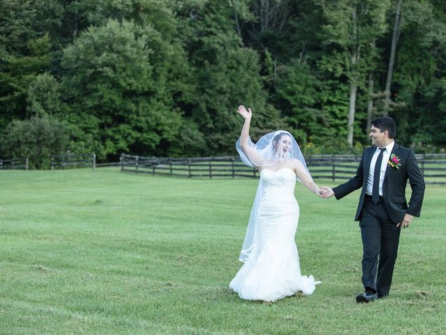 Holly and Chris's Wedding in Asheville, North Carolina 2
