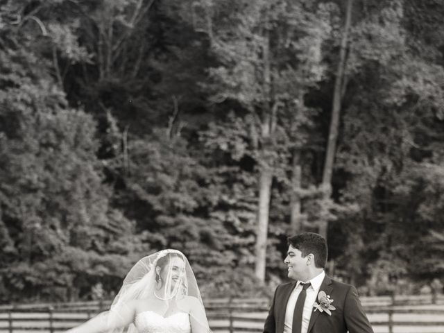 Holly and Chris's Wedding in Asheville, North Carolina 4