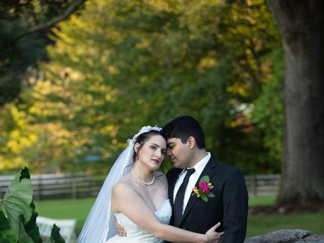 Holly and Chris's Wedding in Asheville, North Carolina 7