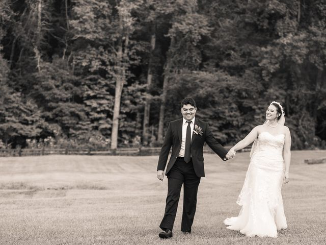 Holly and Chris's Wedding in Asheville, North Carolina 8