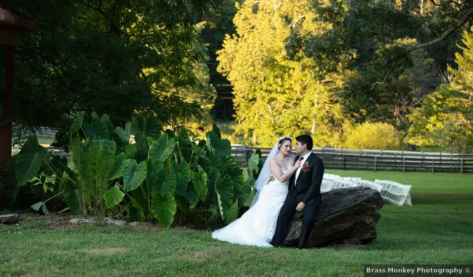Holly and Chris's Wedding in Asheville, North Carolina