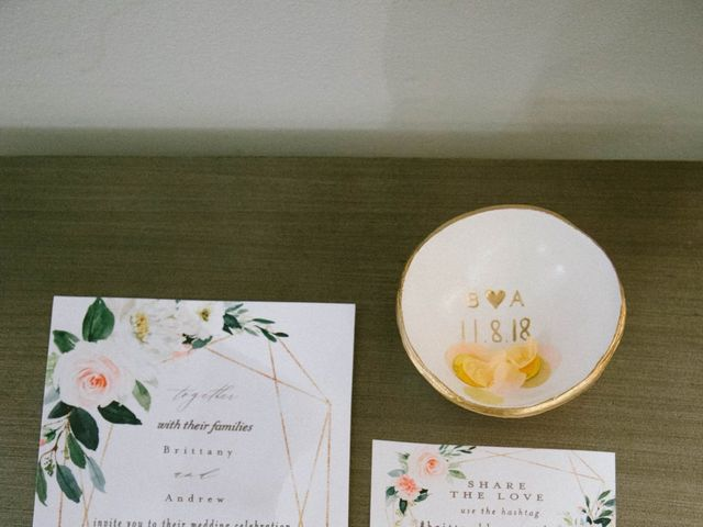 Andrew and Brittany's Wedding in Charleston, South Carolina 16