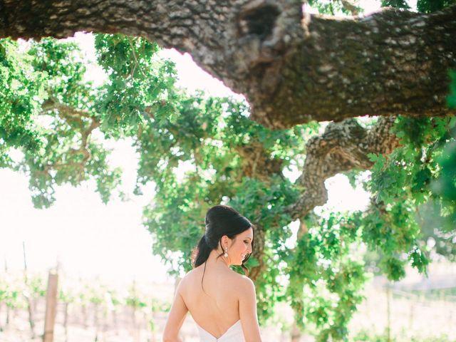 Alicia and Justin's Wedding in Napa, California 6