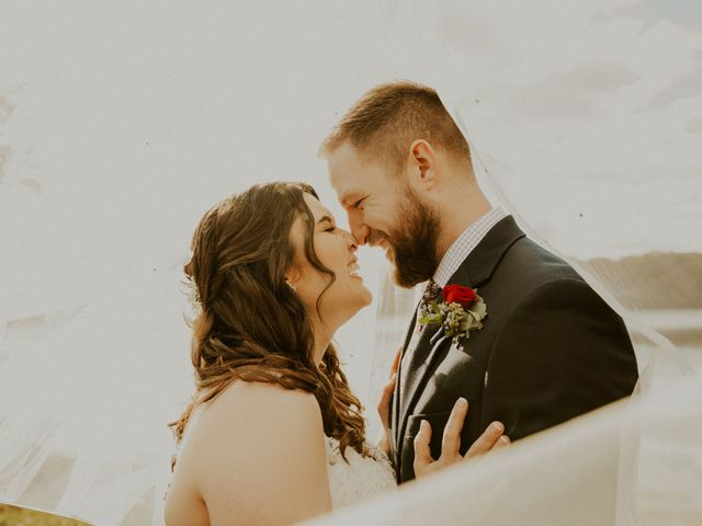 Jon and Marlisa's Wedding in Livonia, Michigan 1