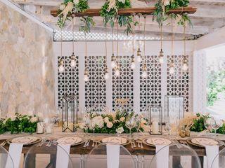 The wedding of Lulu and Veljko 3