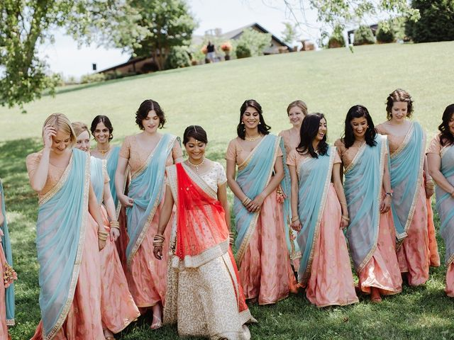 Alan and Ruchi's Wedding in Charlottesville, Virginia 6