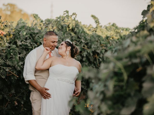 Luis and Vanessa's Wedding in Sacramento, California 23