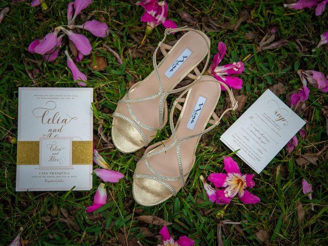Alex and Celia's Wedding in Miami, Florida 46