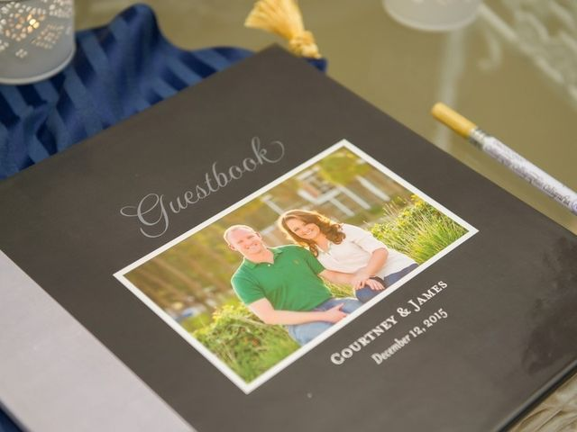 Courtney and James's Wedding in Tampa, Florida 16