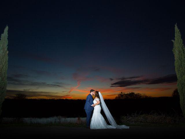 The wedding of Ashley and Ian