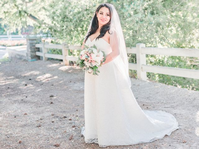 Nick and Allie's Wedding in Trabuco Canyon, California 16