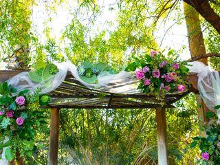 Sara and Michael's Wedding in Tucson, Arizona 8