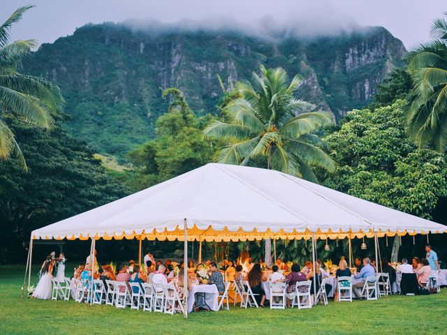 Bella and Larry's Wedding in Hawaii National Park, Hawaii 16
