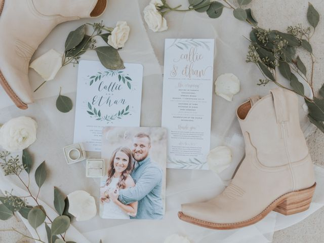 Ethan and Callie's Wedding in Fort Collins, Colorado 1