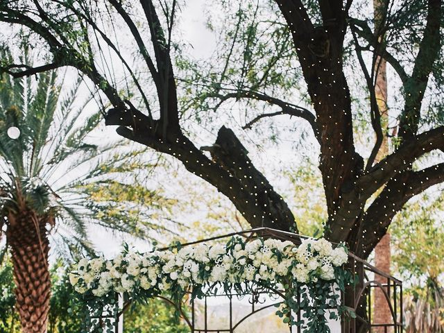 Tim and Alexa's Wedding in Phoenix, Arizona 14