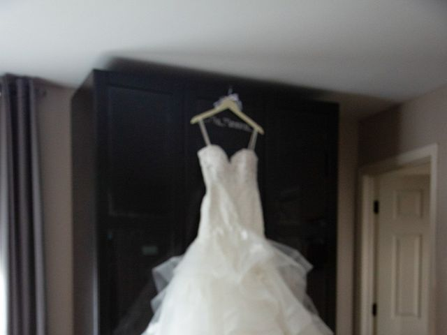 Nick and Angeline's Wedding in Chicago, Illinois 5
