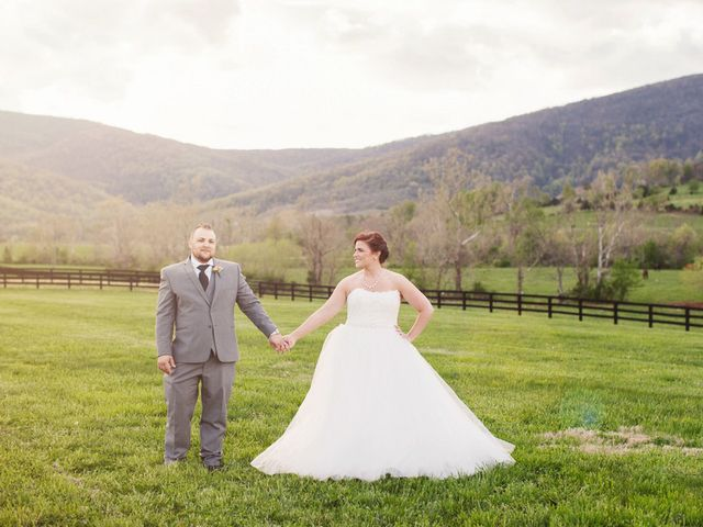 Liz and Zach's Wedding in Charlottesville, Virginia 32