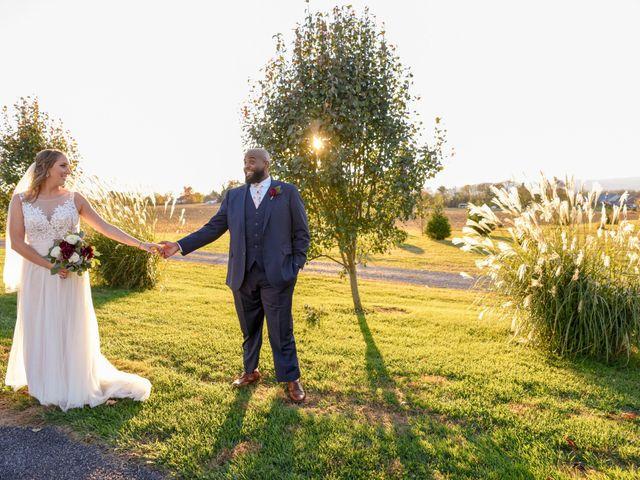 The wedding of Lisa and James