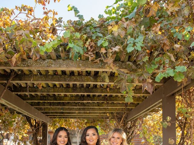 Eric and Erica's Wedding in Livermore, California 5