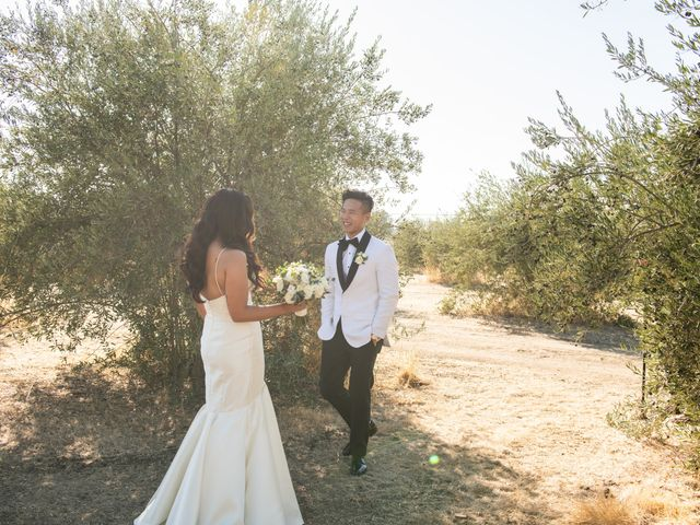 Eric and Erica's Wedding in Livermore, California 64