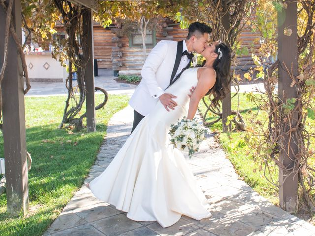 Eric and Erica's Wedding in Livermore, California 26